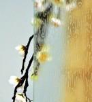 vitrage ornemental colorado pour fenêtre pvc PROFERM 06