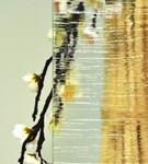 vitrage ornemental kura clear  pour fenêtre pvc PROFERM 06