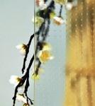 vitrage ornemental master carre pour fenêtre pvc PROFERM 06
