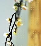 vitrage ornemental master lens pour fenêtre pvc PROFERM 06