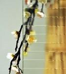 vitrage ornemental master ligne pour fenêtre pvc PROFERM 06