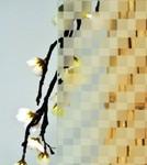 vitrage ornemental satin décor 274 pour fenêtre pvc PROFERM 06